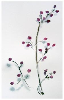 1915 winter berries