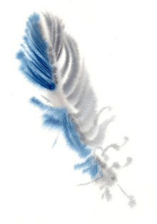feather 1 15