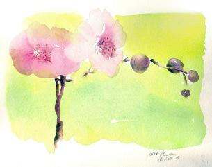 pink flower 2 8 15