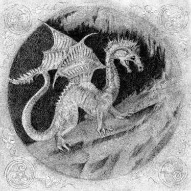 dragon 8 9 16